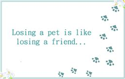 printable pet loss pawprints sympathy condolence greeting cards