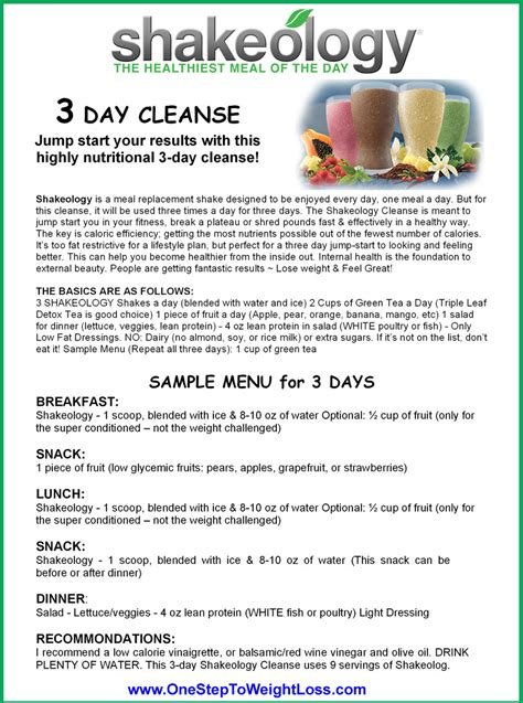 3 Day Detox Diet Pdf by Best 25 Shakeology 3 Day Cleanse Ideas On