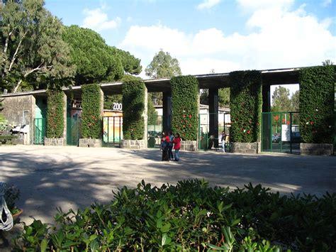 giardino zoologico napoli giardino zoologico napoli 187 zoo di napoli gallery