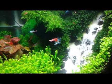 how to make an aquascape aquascape waterfall youtube