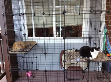 How to build your own catio from Cat and Caboodle   catioblog