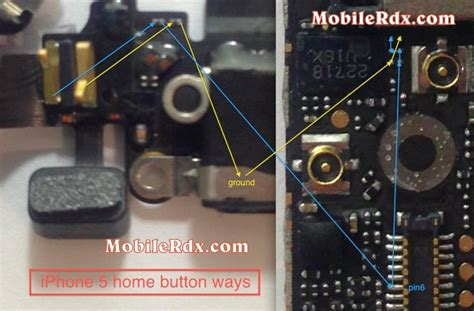 iphone 5 home button ways not working problem