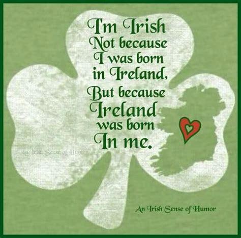 born lucky definition 25 best irish quotes ideas on pinterest
