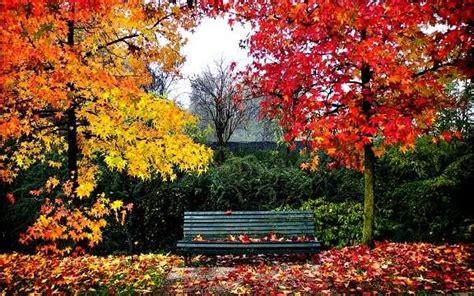 imagenes de otoño en mendoza paisajes de oto 241 o paperblog