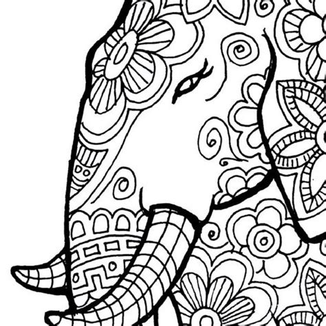coloring pages for adults of elephants elephant coloring page to print and color nature flowers