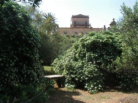 giardino di pertinenza prospetto nord della villa visto dal giardino di