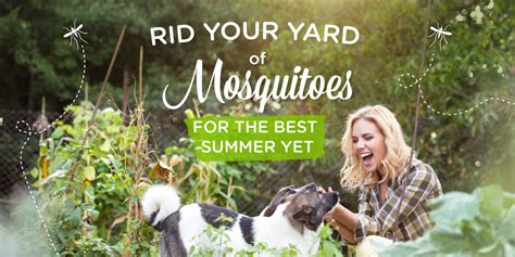 5 Ways To Get Rid Of Mosquitoes In Your Yard 171 Wondercide Blog Get Rid Mosquitoes Backyard