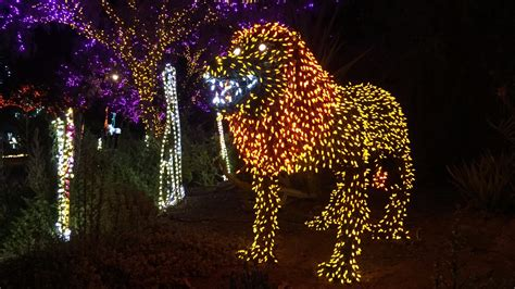 12news Com Phoenix Zoolights Extended To Jan 15 Zoo Lights Phx Az