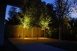 lights for small trees a switch for evening excitement the edison outdoor