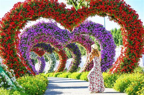 Dubai Miracle Garden Dubai Dubai Flower Garden
