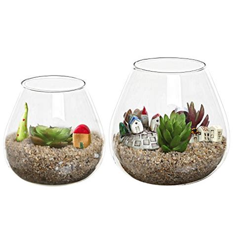 Glass Decorative Bowls And Vases by Set Of 2 Decorative Modern Clear Glass Display Vases