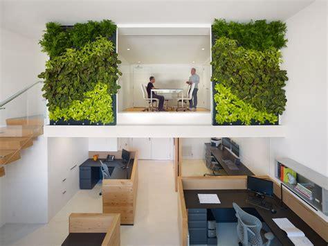 an eco friendly design and a fresh look in the offices of