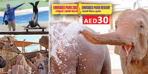 emirates zoo ticket offers restaurants dining food beauty spa massage deals in