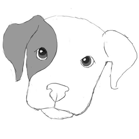 learn how to dogs learn how to draw a in photoshop puppy drawing litle pups