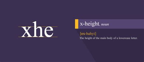 typography x height a must read typography guide for all types of designers