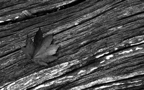best wallpaper black and white best black and white wallpapers 29 wide wallpaper