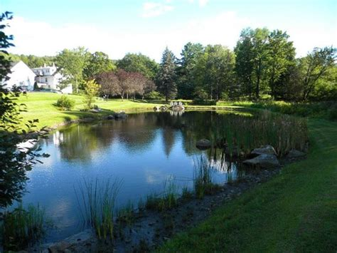 beautiful pond on the grounds with several places to sit and relax picture of trumbull house