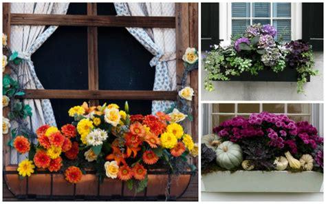 15 breathtaking fall window boxes garden lovers club