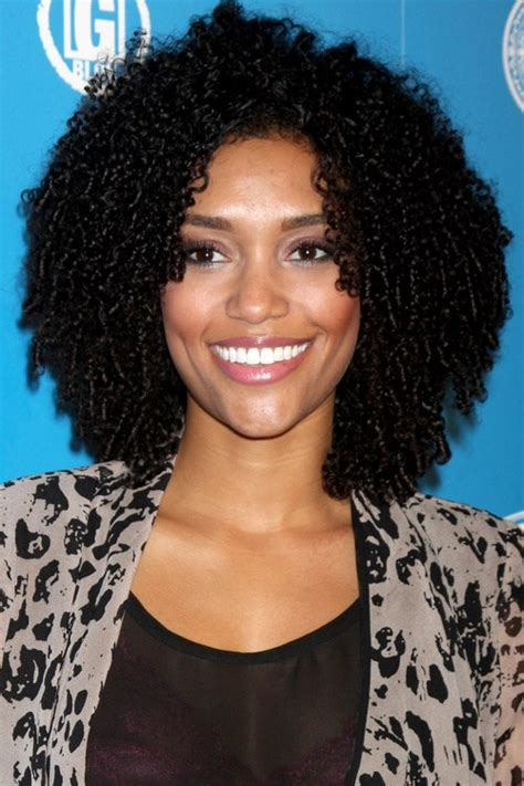Black Curls Hairstyles by 30 Picture Black Curly Hairstyles
