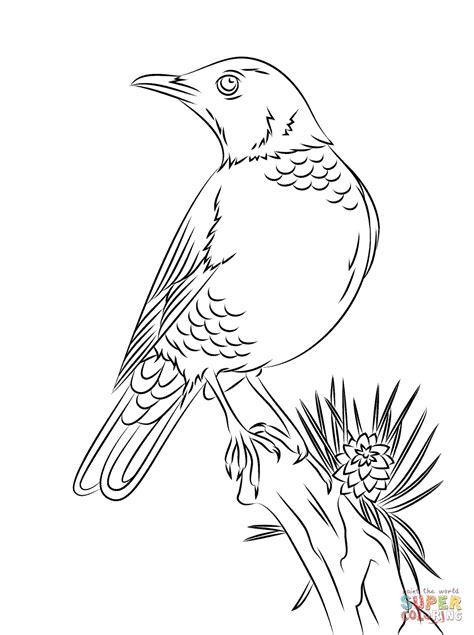 american robin coloring page perched american robin coloring page free printable