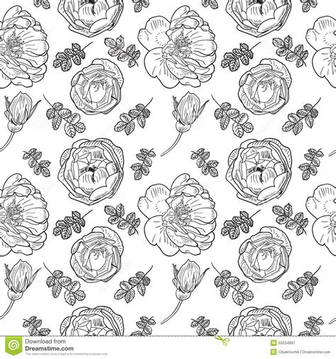 seamless pattern sketch briar rose sketch seamless cartoon vector cartoondealer