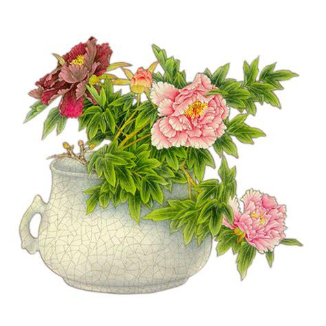 peonies in vase forgetmenot peonies in vases
