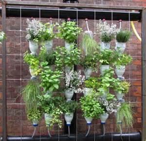 Bottle Gardening Ideas Container Gardens On Vertical Gardens Vegetable Planters And Milk Bottles