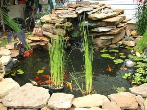 small backyard fish ponds best 25 outdoor fish ponds ideas on outdoor