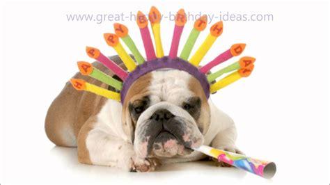 puppy happy birthday happy birthday song