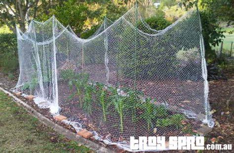 veggie garden netting garden ftempo