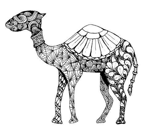 ausmalen erwachsene arabische welt kamel 9