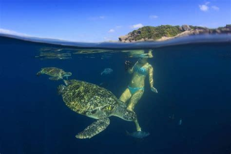 galapagos best islands best snorkeling spots in the gal 225 pagos islands detour