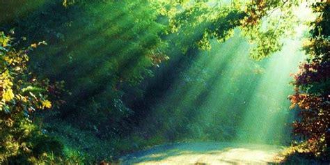 imagenes sin copyright naturaleza 10 fotos de la naturaleza que te invitan a recorrer m 233 xico