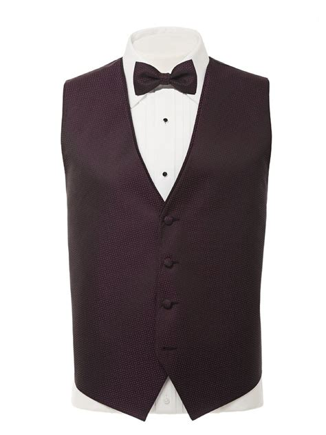 Cheap Hair Stylist Vest by 65 Best Images About Boy Style On Tuxedo Vest
