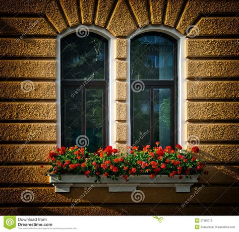 win with flower windows with flowers royalty free stock images image