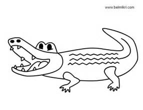Crocodile Printable Coloring Pages For Kids Animal  sketch template