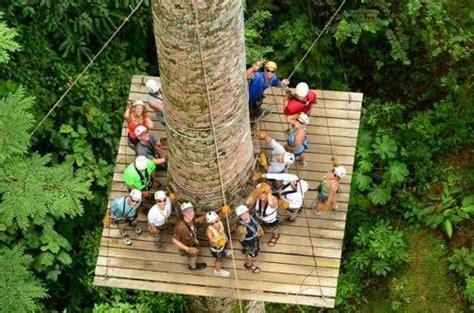 boat canopy central coast rainforest canopy adventure costa rica cruise tours