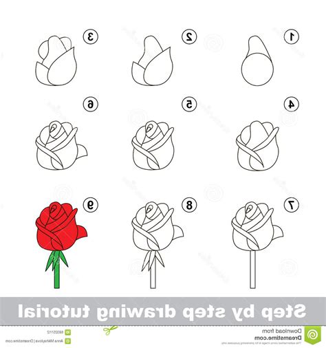 Easy Real Flowers To Draw by Step By Step Flower Drawing Flower Stepskawiku On
