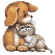 gifs de gatos chistosos imagenes gatos y gatas animados para descargar