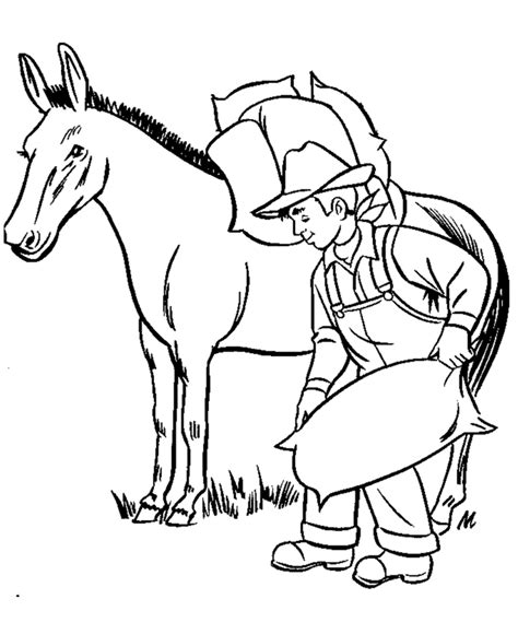 educational horse coloring pages fun farmer coloring pages learning coloring pages