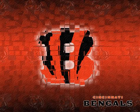 nfl team logos wallpapers afc teams    pixels
