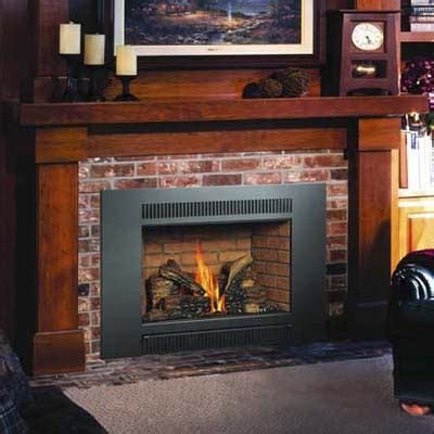 Fireplace Inserts Michigan by Gas Fireplace Insert In Mid Michigan Fireplaces