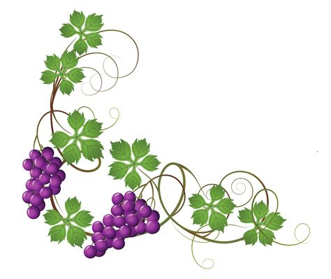 rose vine clip art free download best rose vine clip art