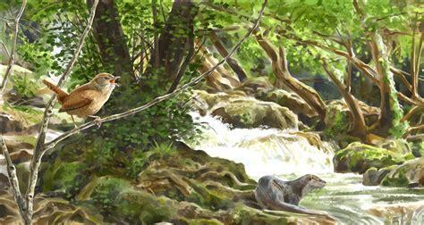 imagenes de ecosistemas naturales ciencias naturales eder reyes ecosistema