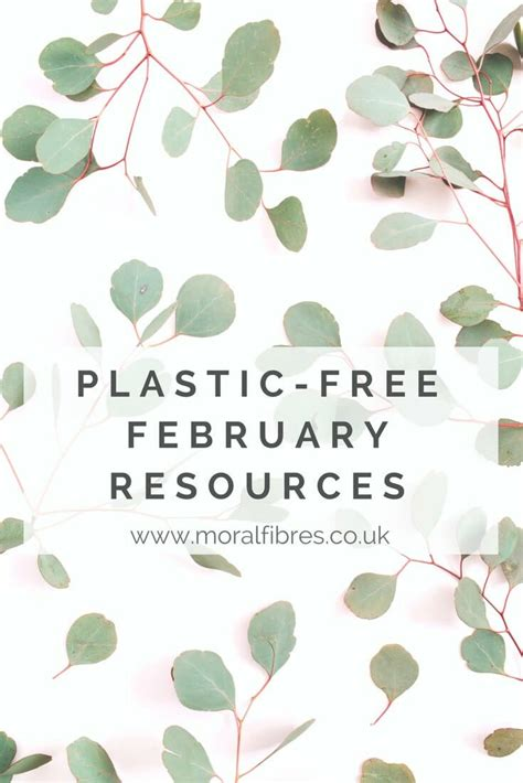 is plastic free toilet paper here my zero waste home moral fibres uk eco green blog