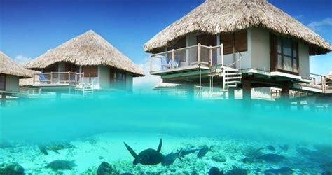 Beach House 8 bora bora 5 star vacations incl airfare goway travel