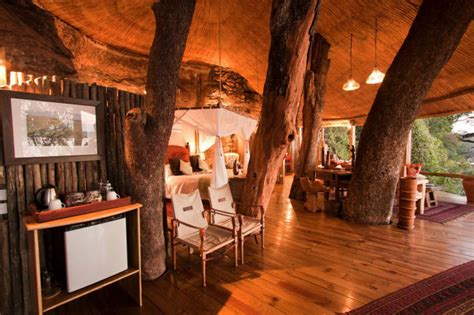 luxury tree houses 301 moved permanently