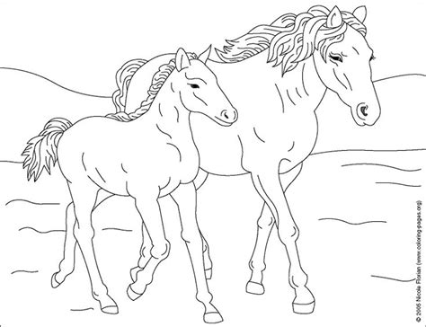coloring pages of baby horses coloring page of show pony proudly wearing blue