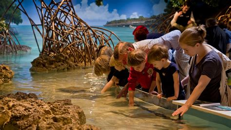 New England Aquarium Family Package   Omni Parker House