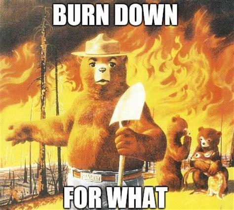 Smokey The Bear Meme - smokey the bear s new slogan beheading boredom